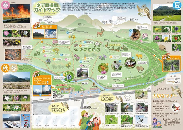 大分の観光情報・ブック・パンフレット・リーフレット・宿・ホテル・グルメなど | :タデ原湿原ガイドマップ
