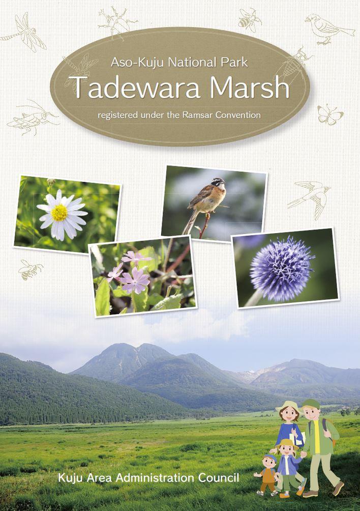 大分の観光情報・ブック・パンフレット・リーフレット・宿・ホテル・グルメなど | :タデ原湿原ガイドブック 英語版 Aso-Kuju National Park Tadewara Marsh