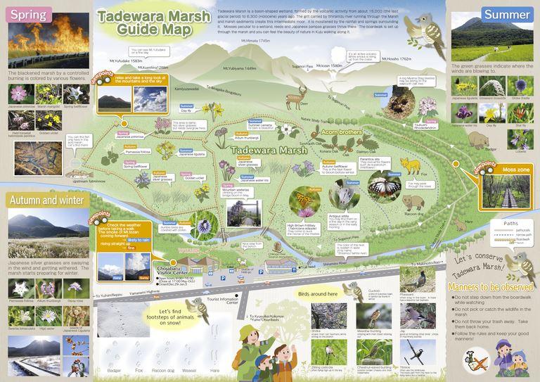 大分の観光情報・ブック・パンフレット・リーフレット・宿・ホテル・グルメなど | :タデ原湿原ガイドブックMAP 英語版 Aso-Kuju National Park Tadewara Marsh